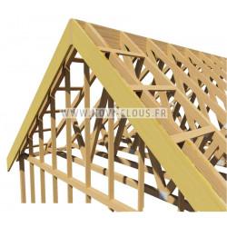 Pack 2200 clous en bande 34° 3.1x50 Annelées Inox TP + GAZ