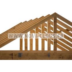 Pack 2200 clous en bande 34° 3.1x55 Annelées Inox TP + GAZ