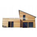 DEWALT C5 TRAK-IT DDF5110500 CLOUEUR A GAZ béton + 3200 clous