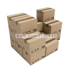 Clous en bande 20° 3,1x80 Lisses acier