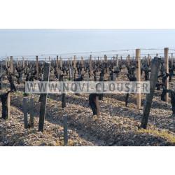 Agrafes 16 NC/S4 - 40mm Inox Boite de 10 000