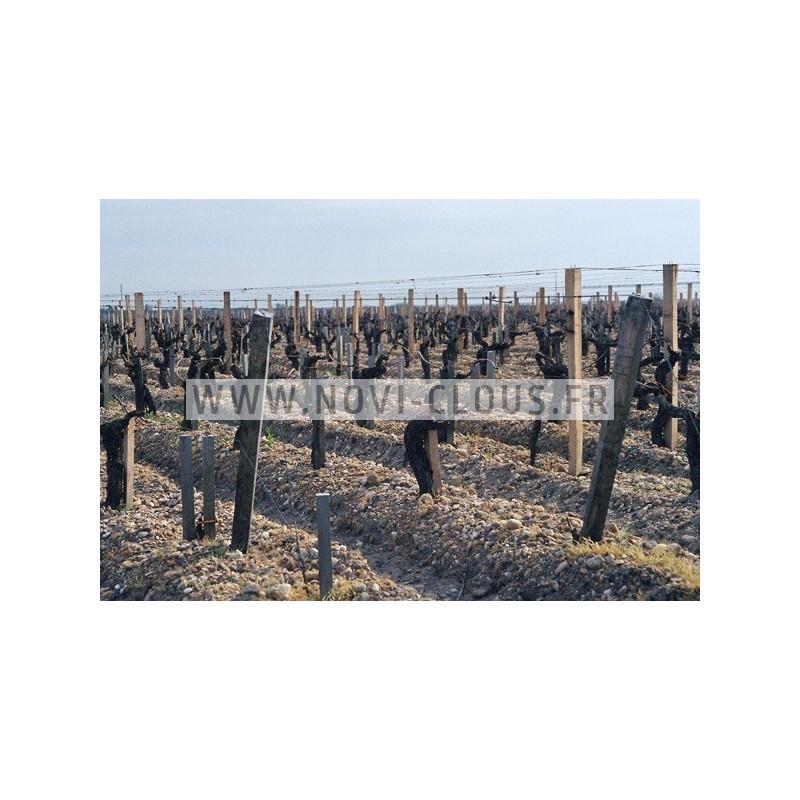 Agrafes 16 NC/S4 - 38mm Inox Boite de 10 000