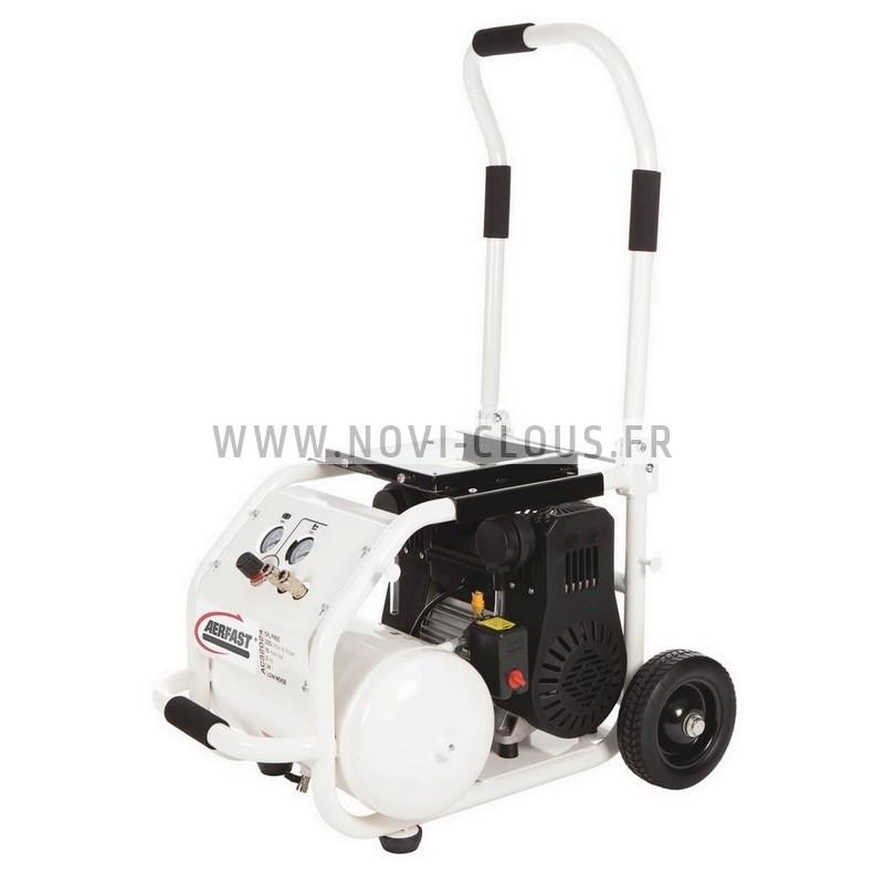 PASLODE/SPIT IM350+ LITHIUM CLOUEUR A GAZ spécial charpente + 2 batteries